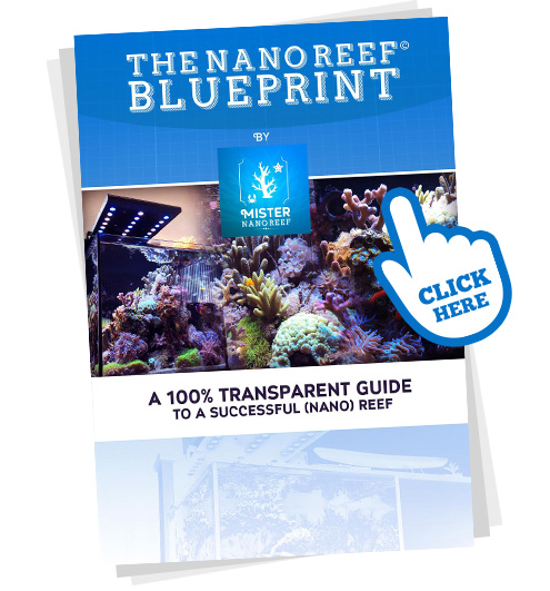 The Nano Reef Blueprint
