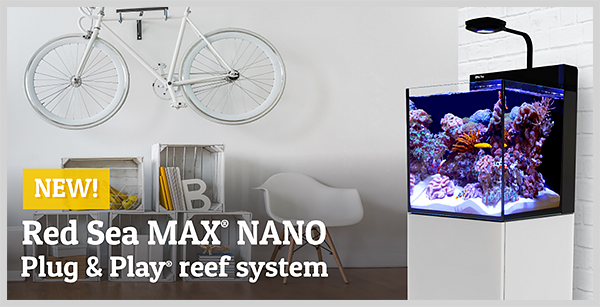 New Red Sea Max Nano