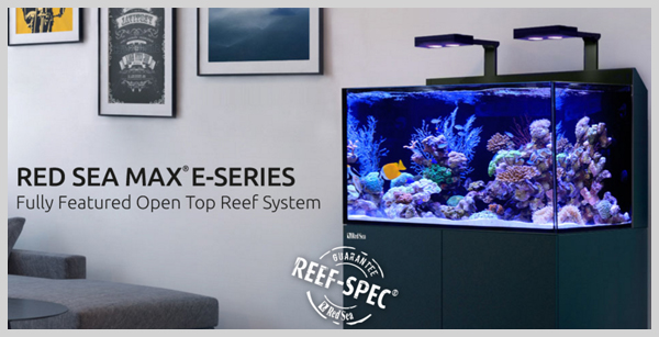 Red Sea Max E-Series