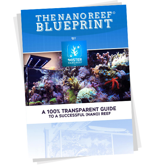 The Nano Reef Blueprint by Mister Nano Reef