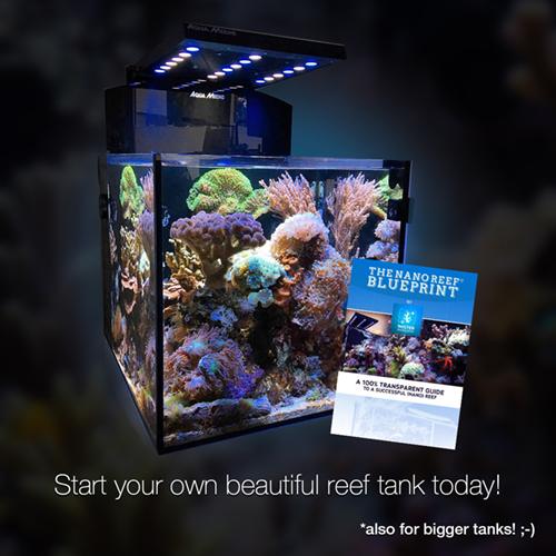 the nano reef blueprint mister nano reef